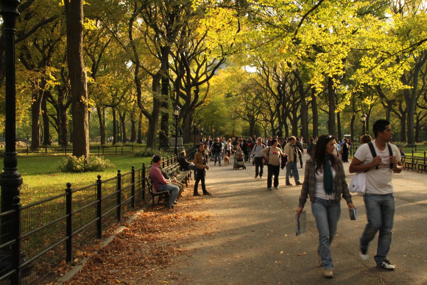 Central Park Picnic Tour